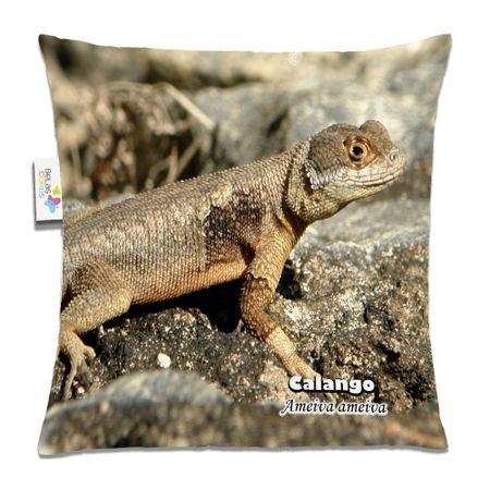 Almofada-Animal-30x30-Calango