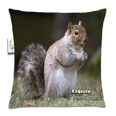 Almofada-Animal-30x30-Esquilo