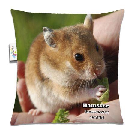 Almofada-Animal-30x30-Hamster