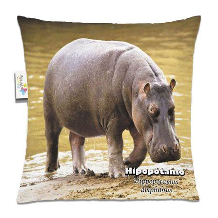 Almofada-Animal-30x30-Hipopotamo