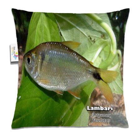 Almofada-Animal-30x30-Lambari