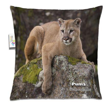 Almofada-Animal-30x30-Puma