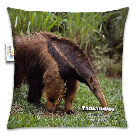 Almofada-Animal-30x30-Tamandua