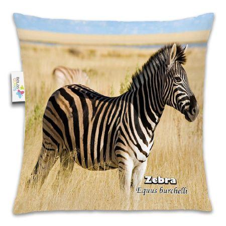 Almofada-Animal-30x30-Zebra