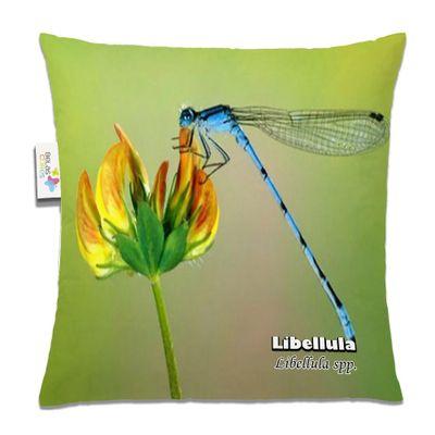 almofada-animal-30x30-libellula